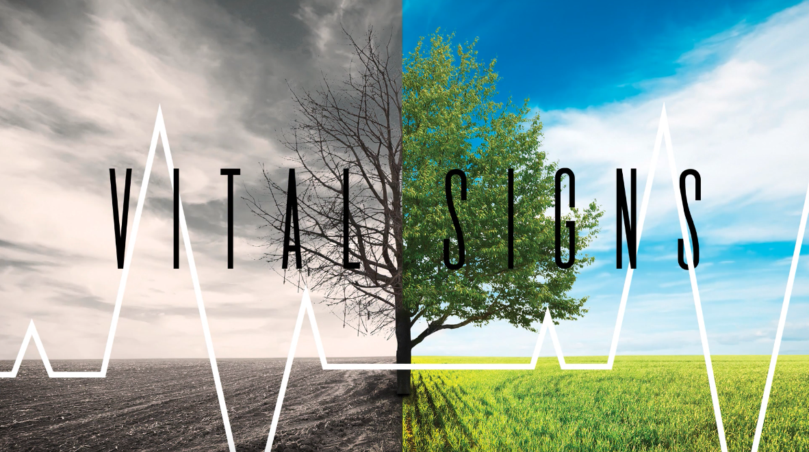 Current Series: Vital Signs